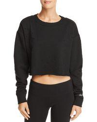 Alo Yoga - Distressed Cropped Sweatshirt - Lyst