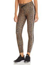 Aqua - Athletic Track Stripe Leopard Print Leggings - Lyst