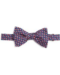 Vineyard Vines - Watermelon Bow Tie - Lyst