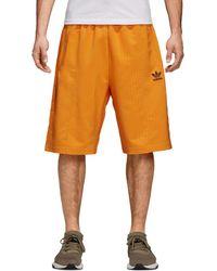 adidas Originals - Pinstripe Pintuck Shorts - Lyst