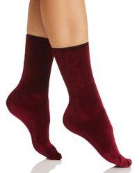 Hue - Velvet Crew Socks - Lyst