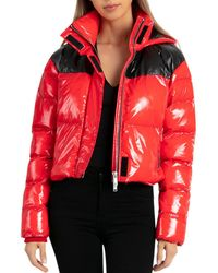 BAGATELLE.NYC - Cropped Hooded Puffer Jacket - Lyst