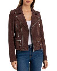 BAGATELLE.NYC - Suede Moto Jacket - Lyst