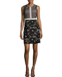 Adrianna Papell - Embroidered Mesh Flared Dress - Lyst