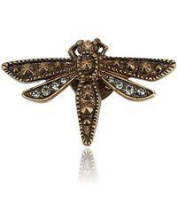 Roberto Cavalli - Small Brass Swarovski Embedded Dragonfly Brooch - Lyst