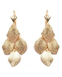 Peermont - Gold Textured Leaf Earrings - Lyst