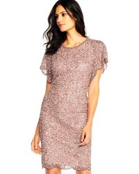 Adrianna Papell - Scalloped Lace Shift Dress - Lyst