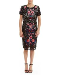 Romeo and Juliet Couture - Romeo And Juliet Couture Floral Embroidery And Lace Dress - Lyst
