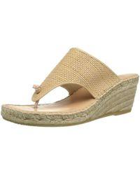 Andre Assous - André Assous Womens Addie-aa Open Toe Casual Platform Sandals - Lyst