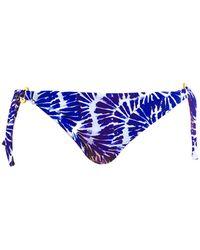 Fantasie - Fantaise Blue Bikini Panties Lanai - Lyst