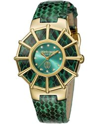 Roberto Cavalli - Womens Green Leather Strap With Green Dial - Lyst