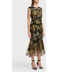 Peter Pilotto - Lace Detail Dress, Size Uk6, Women, Black - Lyst