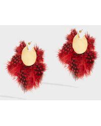Katerina Makriyianni - Gold-tone Feather Earrings - Lyst
