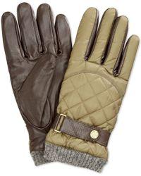 ralph lauren quilted racing gloves | Methuen Rail Trail : quilted racing gloves - Adamdwight.com