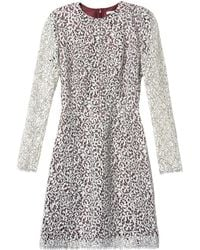 Carven Lace Flared Dress - Lyst