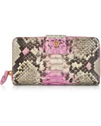 Ghibli - Python Leather Continental Wallet - Lyst