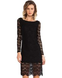 Blaque Label Black Lace Dress - Lyst
