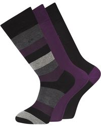 Calvin Klein Purple 3 Pack Stripe Socks in Gift Tin - Lyst