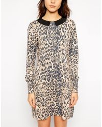 Oasis Animal Collar Knitted Dress - Lyst