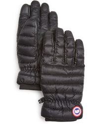 Canada Goose Lodge Black Gloves