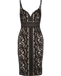 Lover Poppy Sweatheart Dress In Black black - Lyst