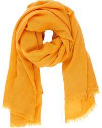 Barneys New York Orange Cashmere Scarf - Lyst