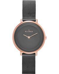 Skagen - Skw2277 Women's Ditte Mesh Watch - Lyst
