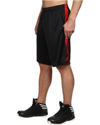 Adidas Ultimate Swat Short - Lyst