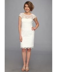 Adrianna Papell Cap Sleeve Lace Sheath - Lyst