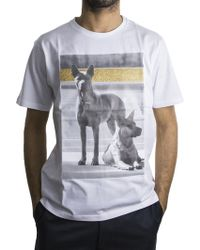 Palm Angels   White Dogs T-shirt   Lyst