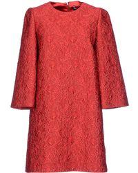 Dolce & Gabbana Short Dress red - Lyst