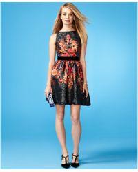 Adrianna Papell Sleeveless Floralprint Dress - Lyst