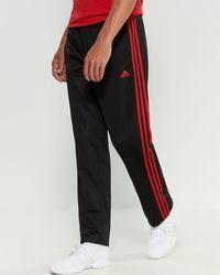 acc11819 3-stripe Tricot Pants