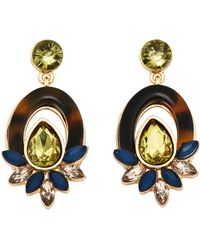 Catherine Stein - Tortoiseshell-Look & Olive Drop Earrings - Lyst