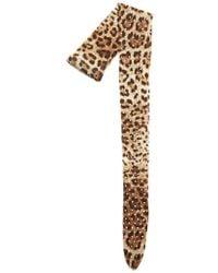 Dolce & Gabbana - Animal Print Tights - Lyst