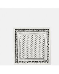 COACH - Lily Of The Valley Silk Bandana - Lyst