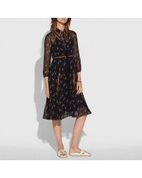 COACH - Embellished Penguin Shirt Dress - Lyst