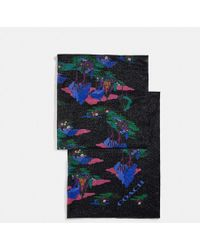 COACH - Spooky Cottage Scarf - Lyst