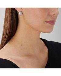 Coast - Dalia Earrings - Lyst
