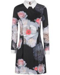 Ted Baker - Kalessa Chelsea Flower Collar Dress - Lyst