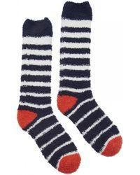 Joules | Fab Fluffy Womens Socks (x) | Lyst