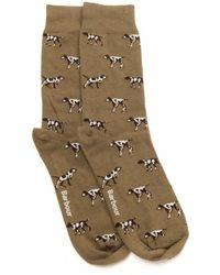 Barbour - Pointer Mens Socks - Lyst