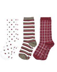Barbour - Spot Stripe Ladies Sock Set - Lyst