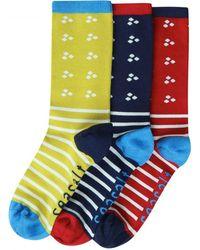 Seasalt - Womens Sailor Socks Gift Bag O 3 (ss17) - Lyst