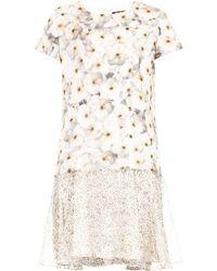 Max Mara Studio Vitalba Dress - Lyst