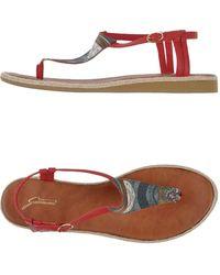 Gattinoni Thong Sandal - Lyst