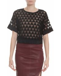Elizabeth And James Gilroy Embroidred Crop Top - Lyst