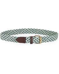 BCBGMAXAZRIA Braided Stretch Cord Waist Belt - Lyst