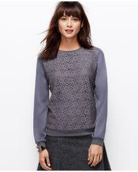 Ann Taylor Lace Woven Sweatshirt - Lyst