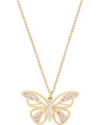 Swarovski Butterfly Pendant Necklace - Lyst